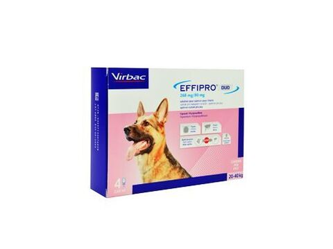 Effipro DUO Dog L (20-40kg) 268/80 mg, 4x2,68ml